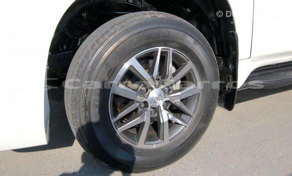 Buy Import Toyota Prado White Car in Import - Dubai in Belize