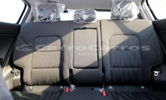 Buy Import Kia Sportage White Car in Import - Dubai in Belize