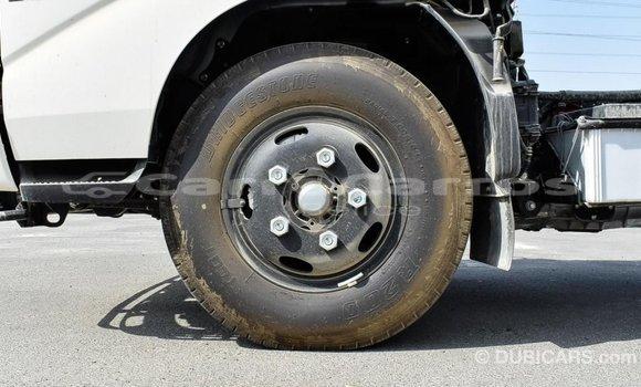 Buy Import Hino 300 Series White Truck in Import - Dubai in Belize